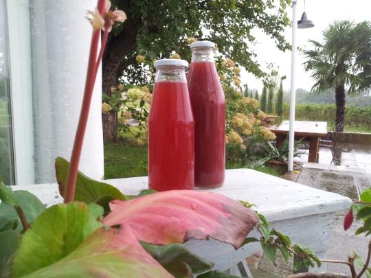 Succo uva rossa